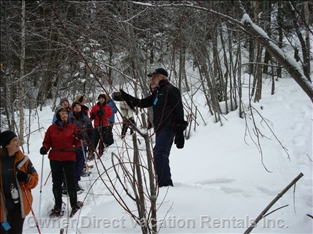 Make Friends Snowshoeing at Nearby Crystal Mountain - Crystal Mtn is a Mere 15 Mins Away,