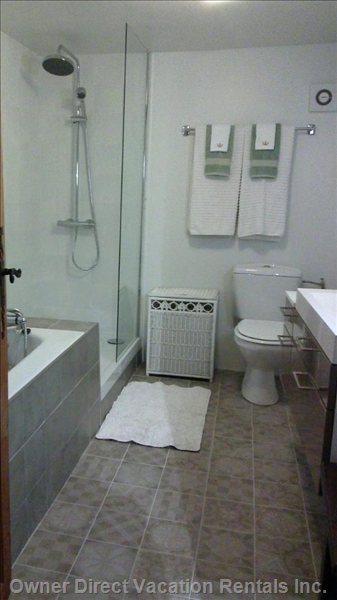 Newly Remodeled Downstairs Bathroom, Bathtub, Separate Shower, Towel Warmer