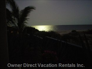 Gorgeous Moonlight on the Sea of Cortez