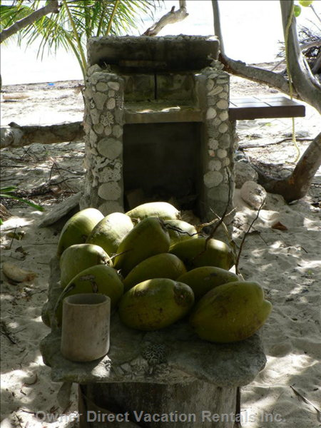 Outdoor Grill on the Beach. - we Have Plenty Firewood for Preparing Coals for the Grill. about 30 Mature Coconut Palms Provide Fresh Coconuts Year-round. Ask our Caretaker to Open them for a Refreshing Coconut Milk Drink.