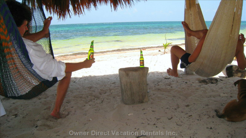 Relaxing in Hammocks on the Beach - a Perfect Way to Hang out (Literally) and to Enjoy a Cool Cerveza after a Long Day of Snorkeling.