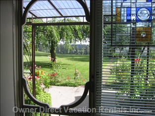 View of Garden through Screen Door