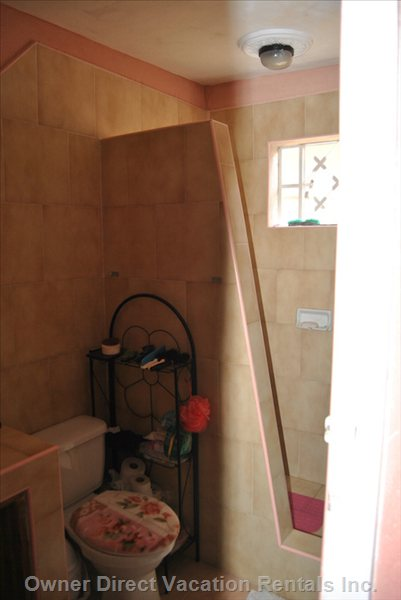Toilet and Entrance to Shower