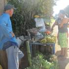 Fresh Vegetables and Fruits and Potatoes, Tomatoes Etc one Block from House