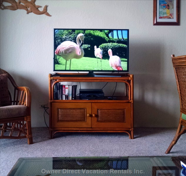 Hdtv with Blu-Ray Player