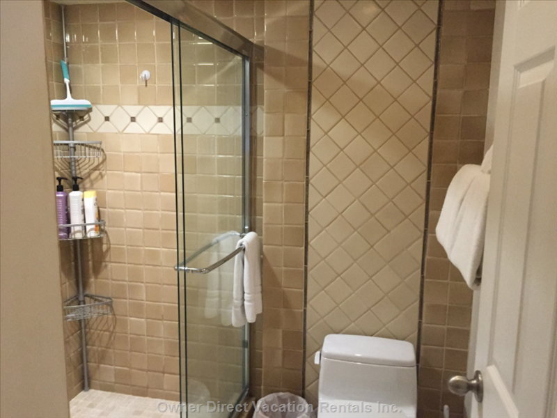 Large Walk in Shower with Rain Head and Hand Held Shower Heads