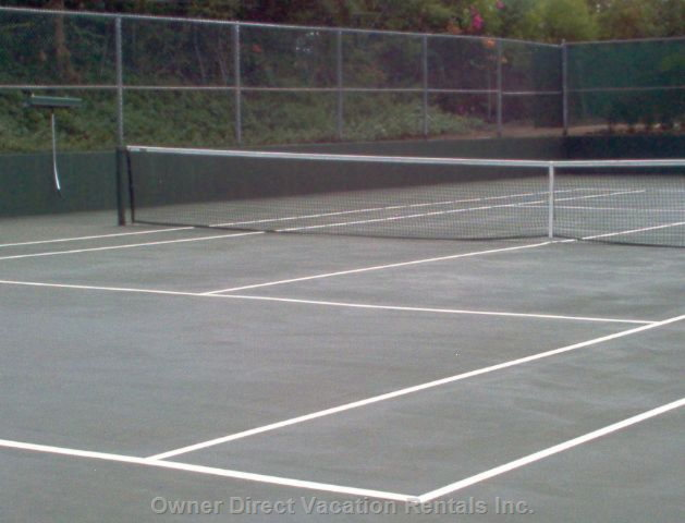Tennis Court W/Rackets and Balls Included for the Asking