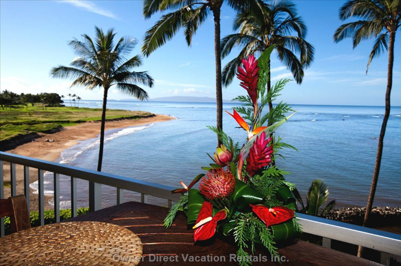 Tropical Flowers, Lanai View