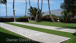 Shuffleboard on Property