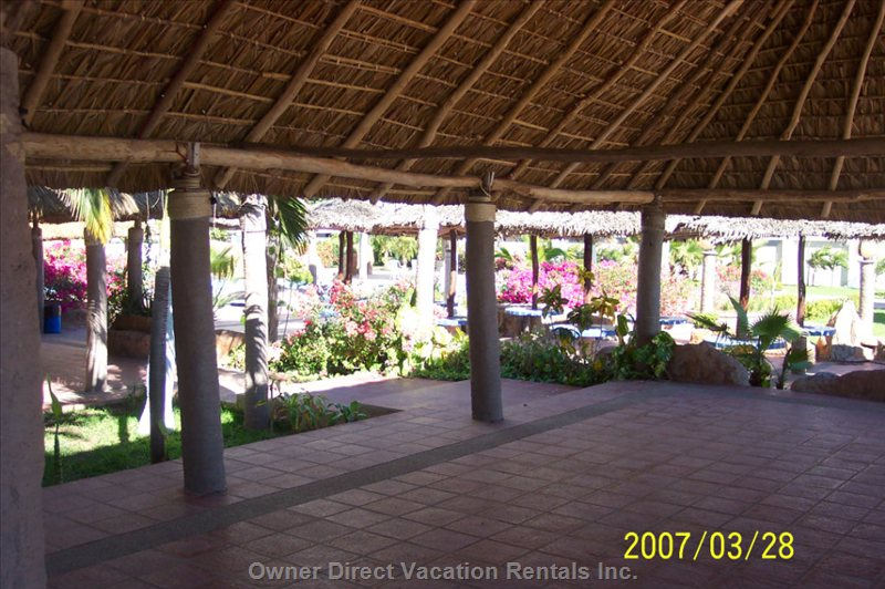 Grand Palapa - Relax under the Oceanfront Grand Palapa in a Lush Setting