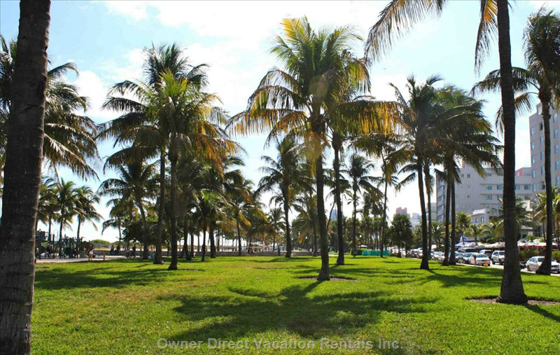 Ocean Drive's Lummis-Park is Closeby