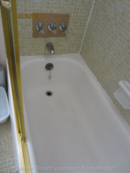 Toilet Bathtub