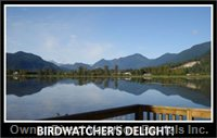 Bring your Binoculars. Watch the Eagles, Ducks and other Wildlife.