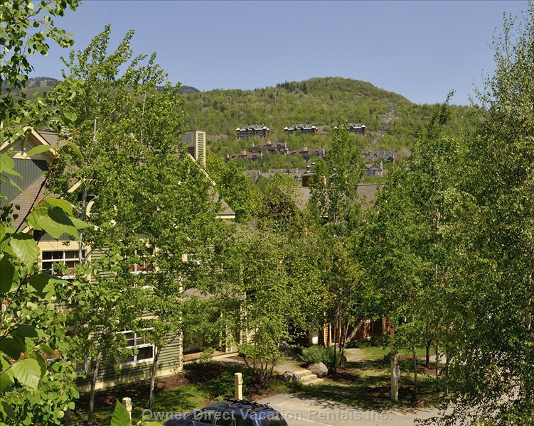 View of Condo and Mont Tremblant
