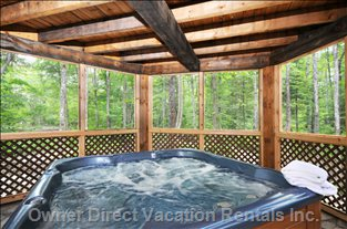 Outdoor Hot Tub - Screened in So Never Need to Worry about Mosquitoes.  Covered So you Can Enjoy Even When Raining Or Snowing. Screened on all 6 Facades to Give the Feeling that you Are in the Middle of the Forest.
