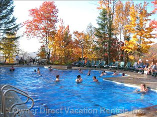 Pool View in Autumn