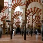 Cathedral Mosque of córdoba, 120 Km.