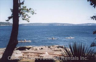 Kayakers Paddling by the Cottage