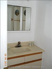 Bathroom Sink and Mirrored Medicine Cabinet.