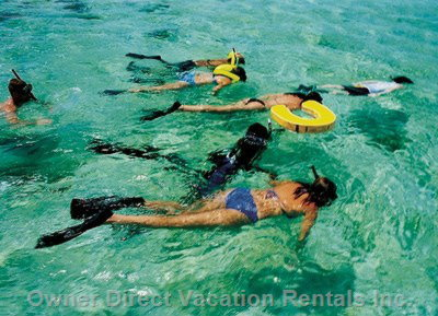 Snorkel and Swim Only Steps from our Door in Crystal Clear Sea Water Or Swim in Private Swimming Pool!
