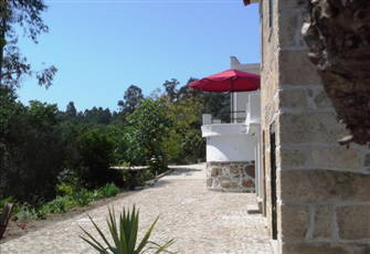 Spacious Former Farmhouse with Mountain View, near Coimbra & Viseu