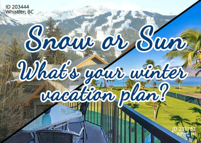 Snow or Sun - What's your Winter Vacation Plan?