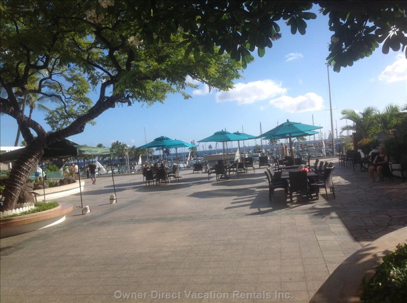 Enjoy on our Large Patio, Next to the Marina