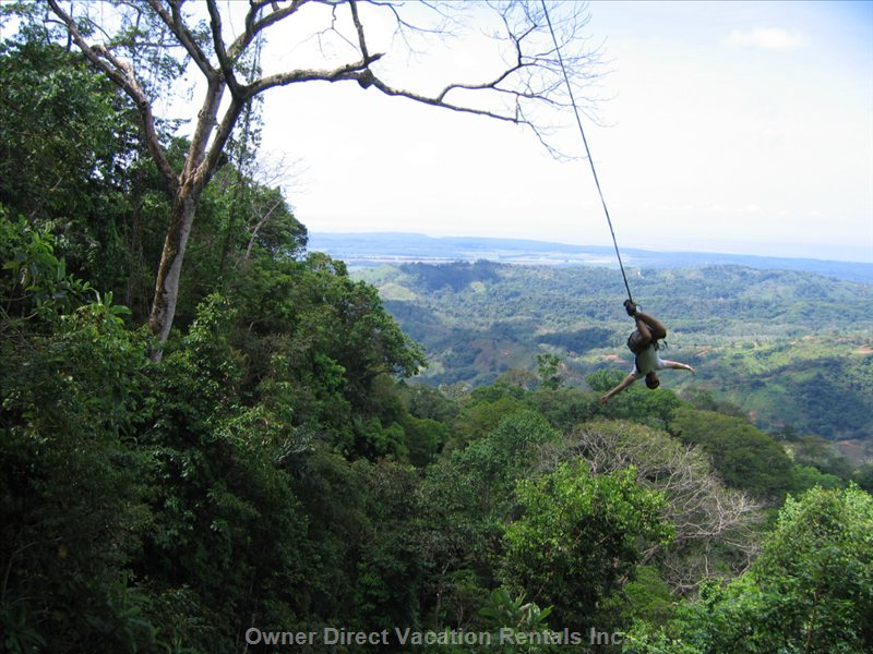 Optional Tarzan Swing after Zip Lining
