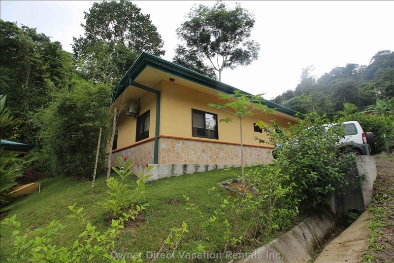 Casa Paraiso Offers the Jungle as your Backyard.  Enjoy Extensive Wildlife Viewing from your Deck