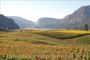 The Reason you Want to Visit Okanagan Falls.