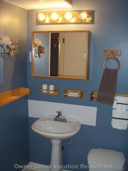 Bathroom Showing Sink and Mirror