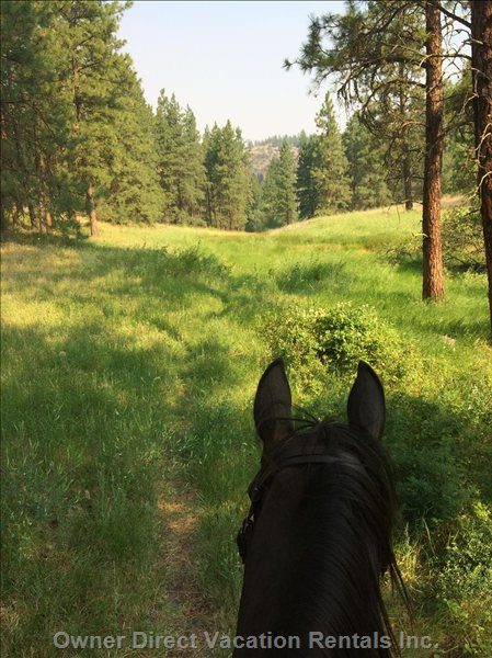 Many Beautiful Hiking and Riding Trails.