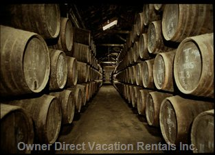You Can Visit Various Port Wine Cellars at 800 Meters.