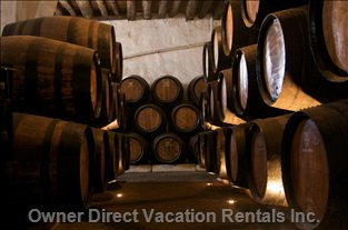 Visit the Port Wine Cellars at 800 Meters