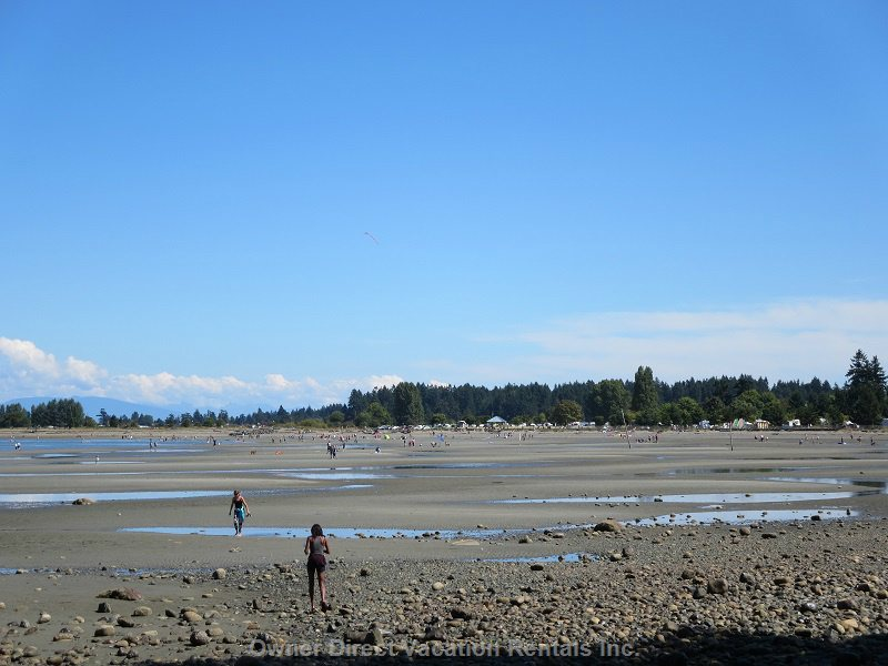 The Beach at Low Tide