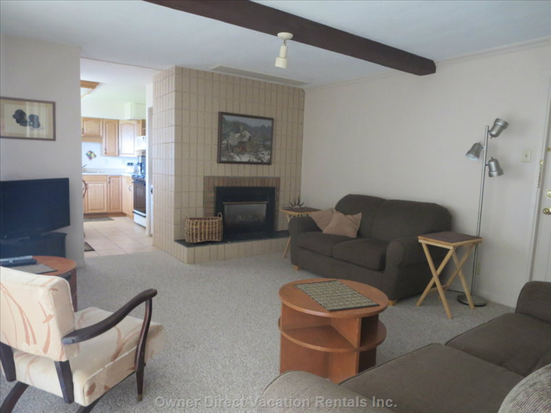 Living Room has a Pull out Couch and a Love Seat. The Room has a Flat Screen Tv with a Gas Fireplace.
