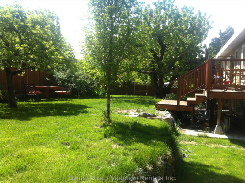 Fully Fenced Small Orchard with 7 Fruit Trees