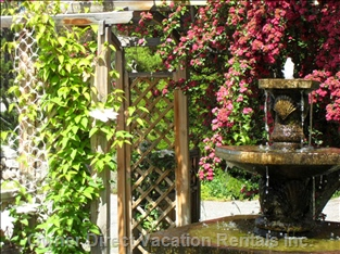 Water Fountain in Front Yard