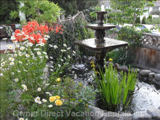 Fountain in Spring