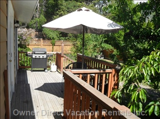 Deck with Bbq and Bistro Table
