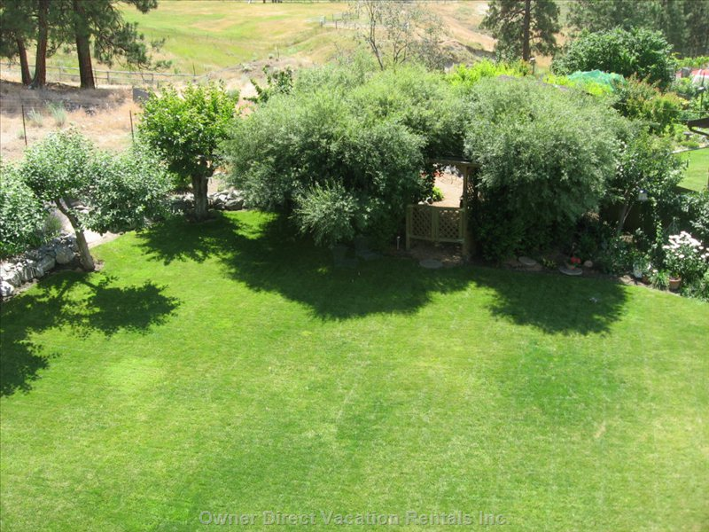 Backyard View from Top Deck - the View Looking Towards the Secret Garden.