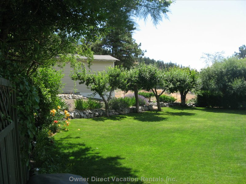 Main Floor Backyard View - Deer Visit Daily from the Nature Area, through the Back Fence.