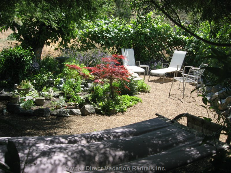 Secret Garden ....  There are Lounge Chairs for you and a Lovely Rock Garden, Grape Vines and a Cherry Tree!