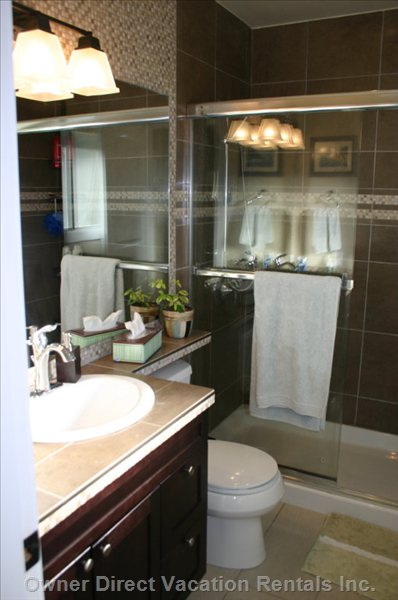 New Master Bath Ensuite - Heated Floors, Tiled 3x5 Shower