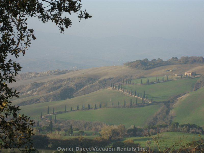 The Road that has Become an Emblem of Tuscany, Seen from our Garden