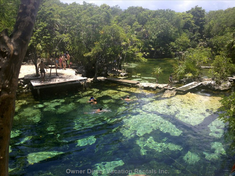 Riviera May is Full of Natural Wonderlands.Visit Cenotes and Eco Parks for Day Trips