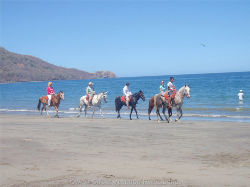 Horsebackriding on the Beach
