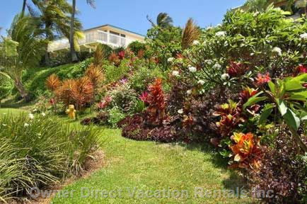 Colorful Hillside Invite you to Enjoy Beautiful Home & Kauai