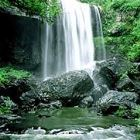 Daintree Rainforest Waterfall