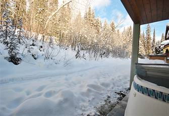 Perfect Ski in/Ski out Location, Minutes from the Village, one Bedroom Condo